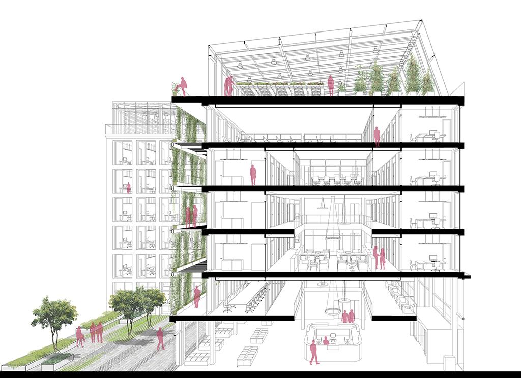 jobcenter mit dachgew chshaus meier ebbers architekten und ingenieure. Black Bedroom Furniture Sets. Home Design Ideas